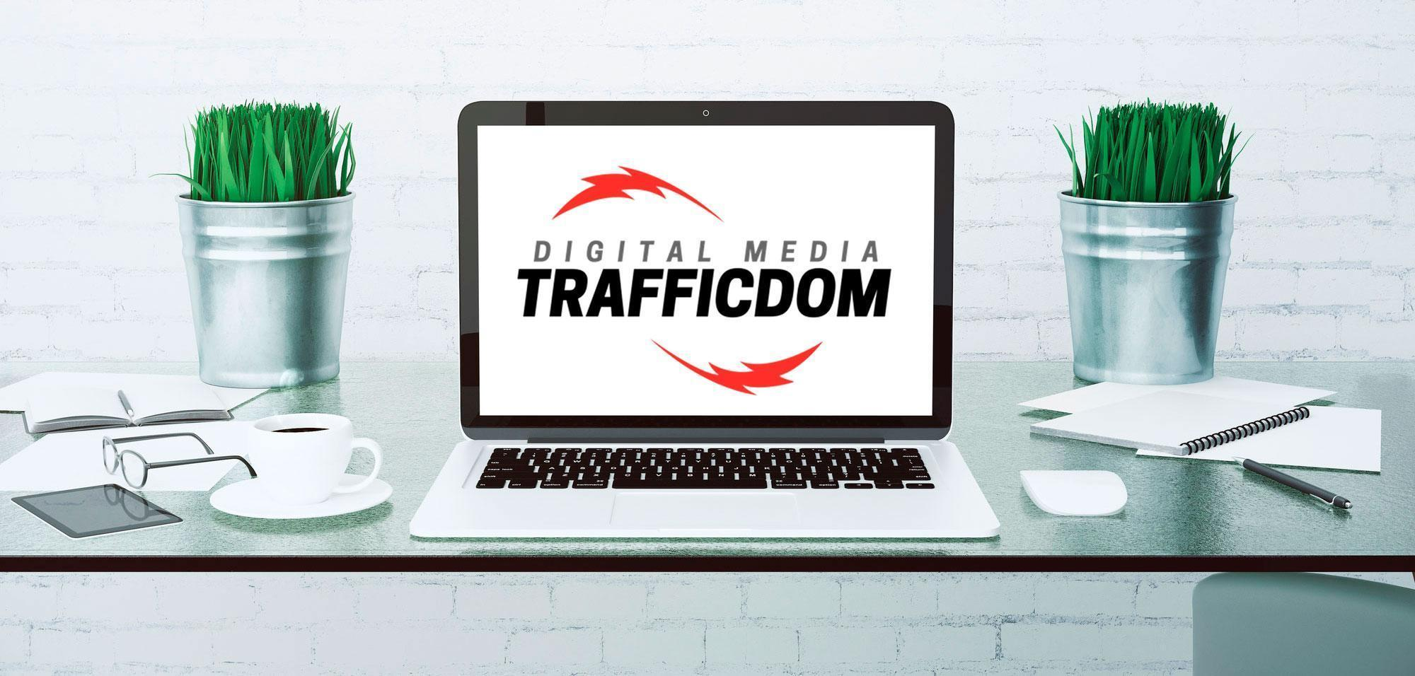 TrafficDom Seo Santa Barbara digital media