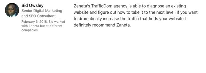 TrafficDom seo santa barbara agency