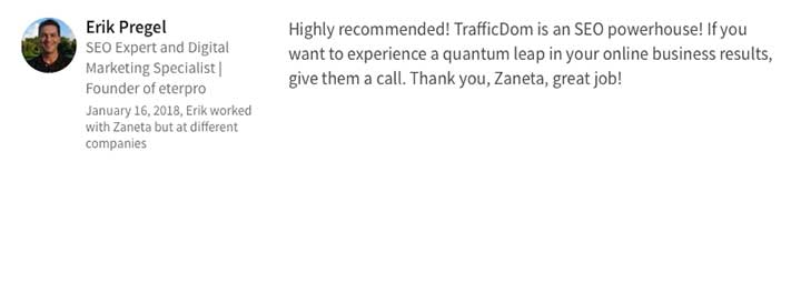 seo services TrafficDom agency santa barbara