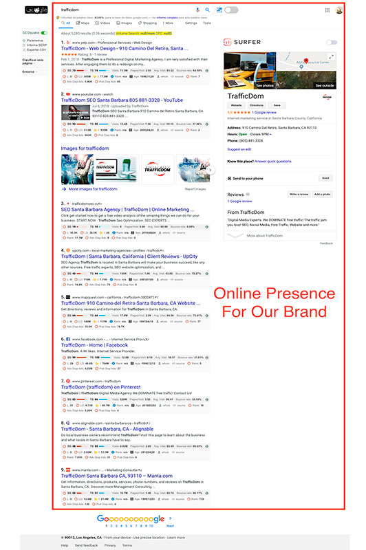 TrafficDom Seo online presence of the brand.