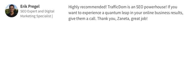 Testimonials-TrafficDom.-Erik-Pregel-SEO-USA